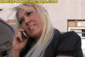 black bull tempted by cougar